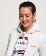 SUPERDRY - ORANGE LABEL ZIPHOOD Ice Marl