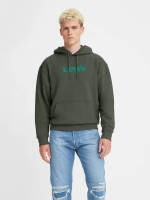 LEVIS T2 RELAXED GRAPHIC HOODIE - Grün
